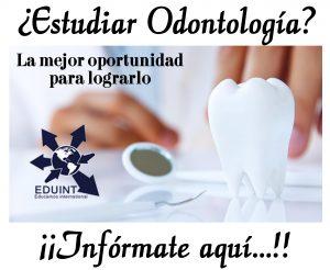 odontologia estudiar